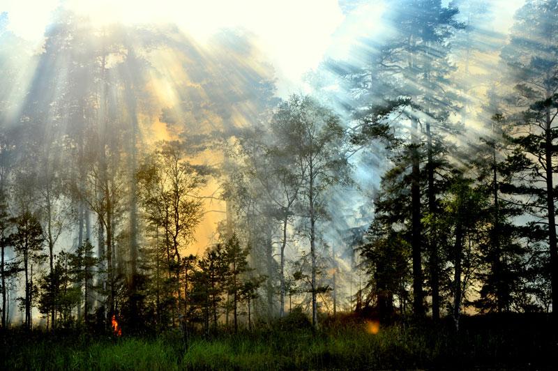 Eld och himmel